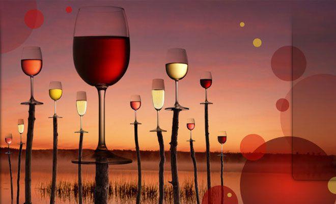 Salon des vins de Loire au Parc des Expositions d'Angers