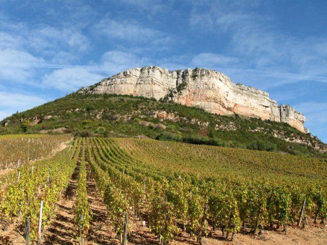 Le premier week-end de juin, les vignerons de l'appellation fêteront dans une ambiance festive conviviale, les 40 ans de leur Cru.