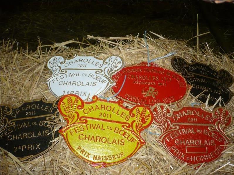 rendez-vous incontournable des amateurs de viande, le festival de boeuf Charolais se déroulera les 5 et 6 décembre 2015_©Festival de bœuf Charolais