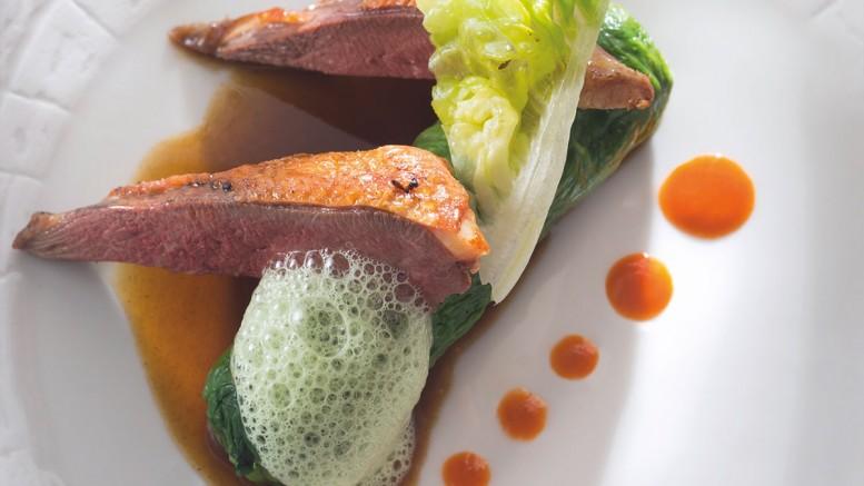 Filets de pigeon abats en caillette de laitue & moutarde de carotte