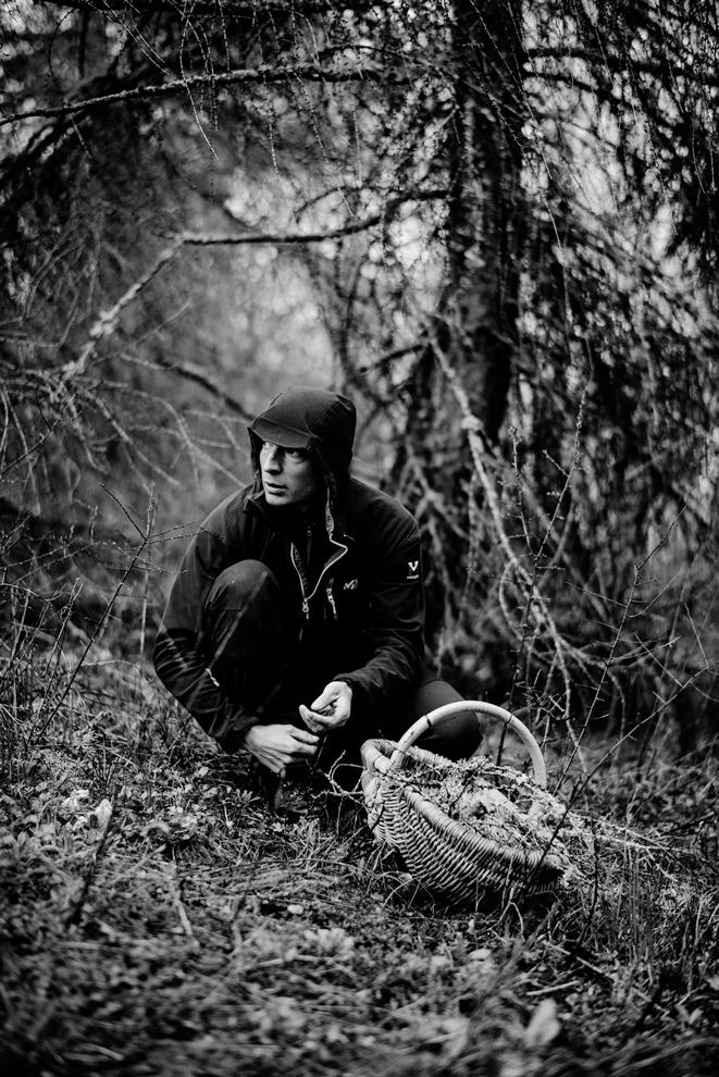 Pour Jean Sulpice, la cueillette est un vrai métier_© Franck Juery