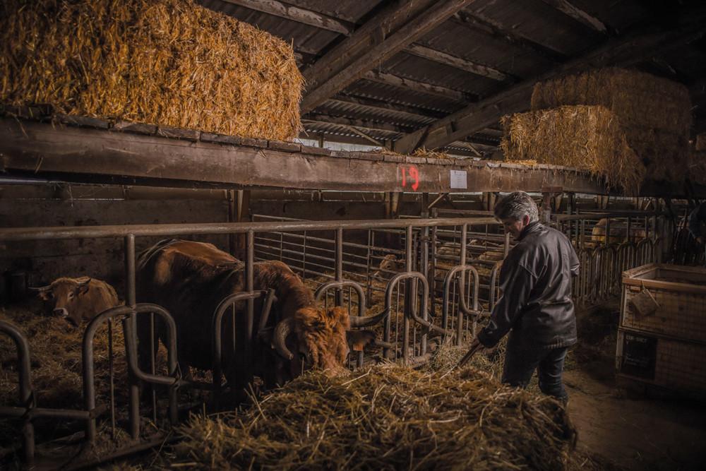 Paulette aide son mari au quotidien, du matin au soir, à la ferme.