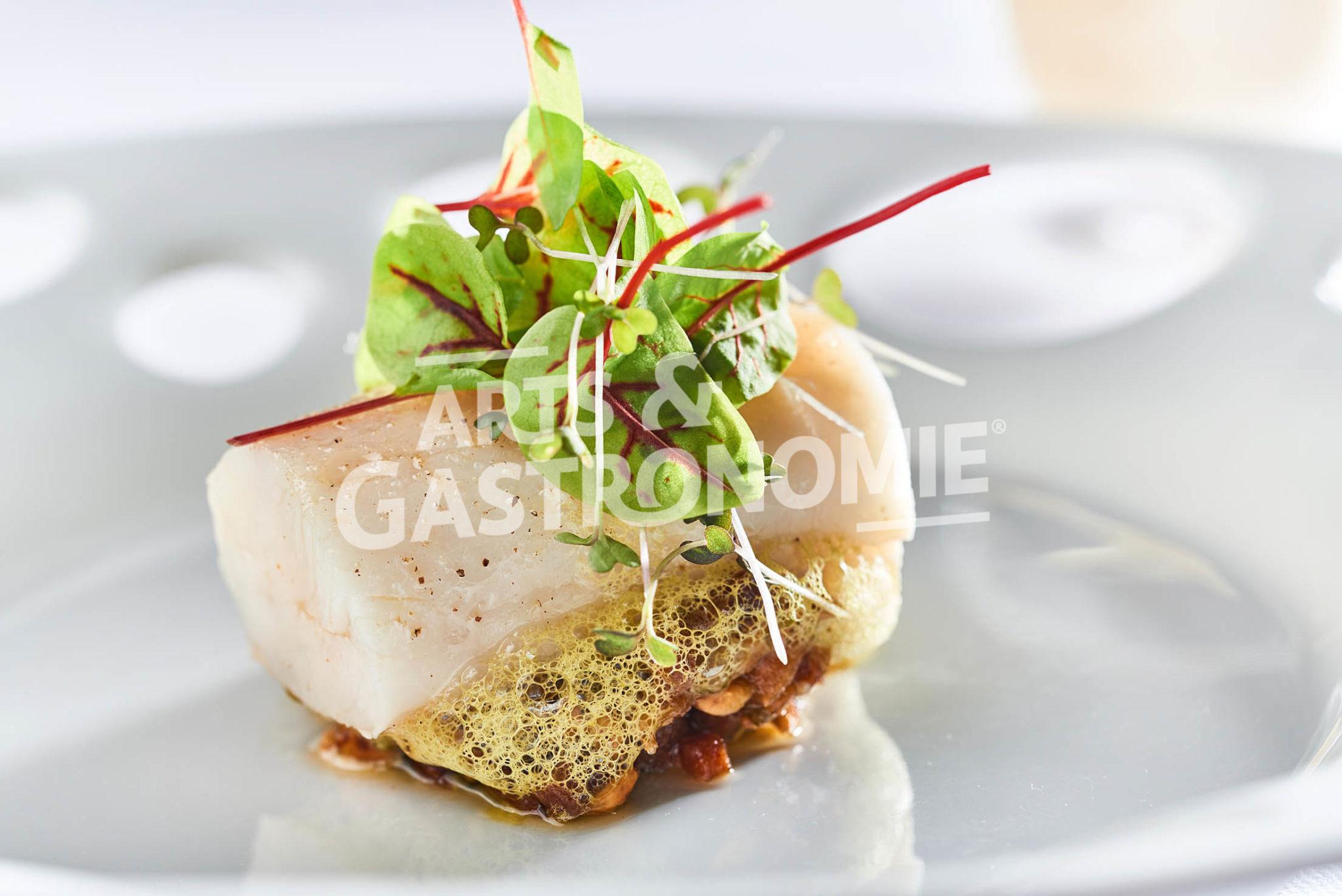 Brochet barbecue laurent petit arts gastronomie - Recette plat gastronomique ...