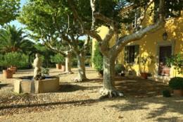 France, Var (83), Bormes les Mimosas, Chateau Malherbe, AOP Cote de Provence