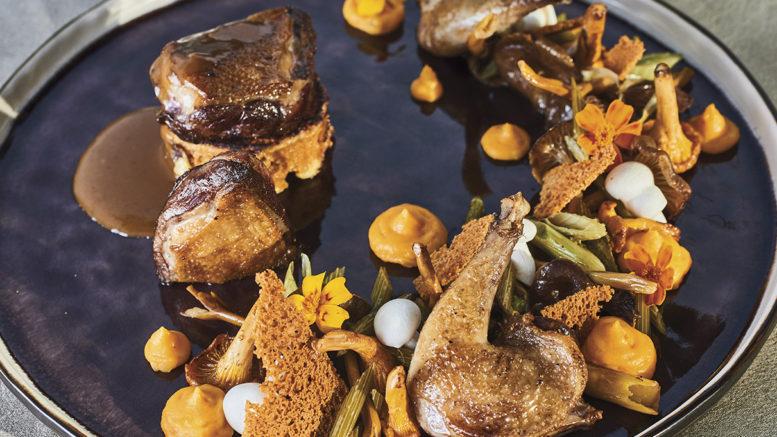PIGEON, Pain d'épices, Crémeux de patate douce, fenouille confit & champignons de saison, recette du chef Boris Nols du restaurant le Jardin Gourmand à Craponne dans le rhône