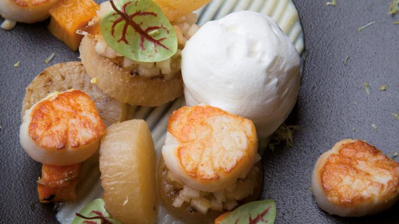 Saint-Jacques poêlées radis daïkon, butternut poire et citron