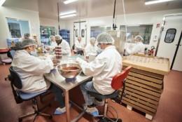 Epicerise, marque d'épicerie fine de l'enseigne Rhône-Alpes de Cerise et Potiron. Produits assemblé dans le Rhône par des travailleurs handicapés. Enseinge de fruits et légumes également.