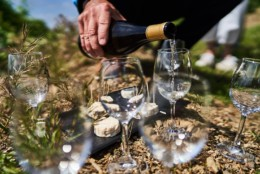 Gyropodes de Condrieu. Balade en segway dans les vignes de Côte Rôtie, beaux paysages, dégustations de produits et vins locaux autour de vienne. Plusieurs circuit, idée sortie en famille ou amis