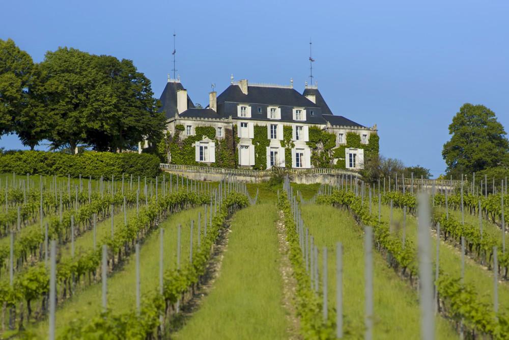 Château de Parenchère vue des vignes au printemps