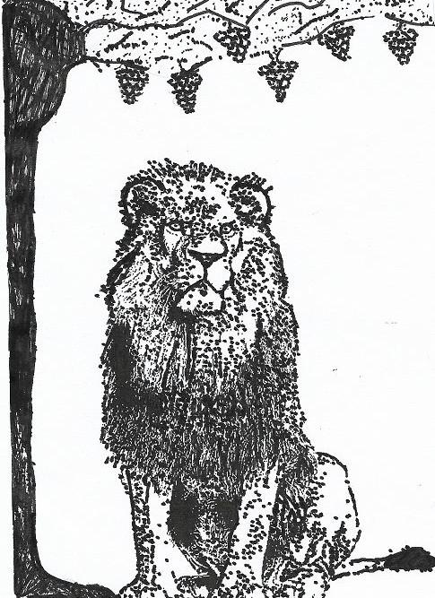 dessin jimmy lion raisins