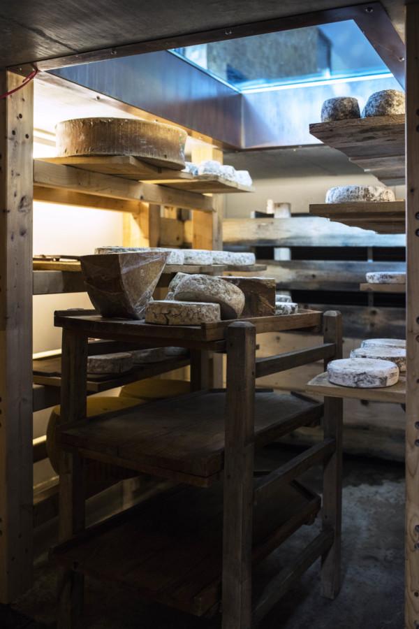 cave d'affinage à fromage - M. Cellard